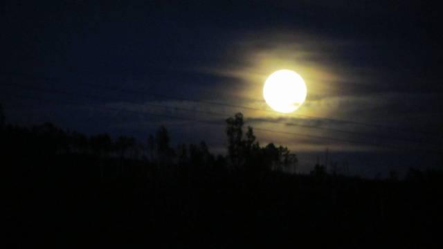 lua (15)